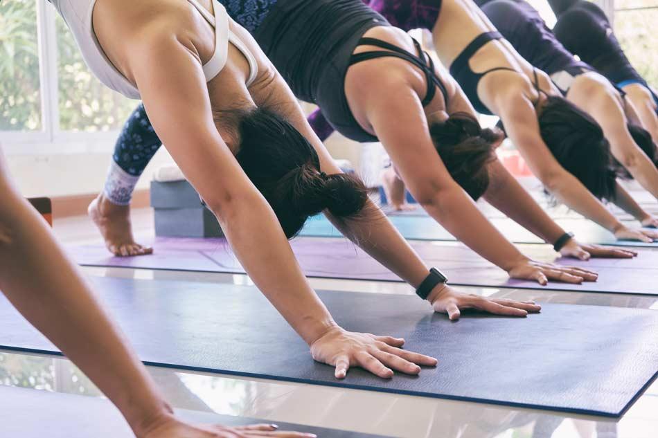 LE vinyasa Yoga, méthode d'enseignement yoga proposé par Alexandra Siano au studio pilates and core de jonzac